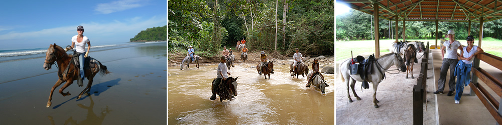 Born to ride free: horseback riding in the rainforest or on the beach in Costa Rica.