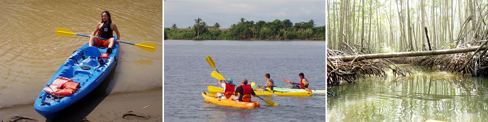 Kayaking tours are one of the best ways to see wildlife in Costa Rica.