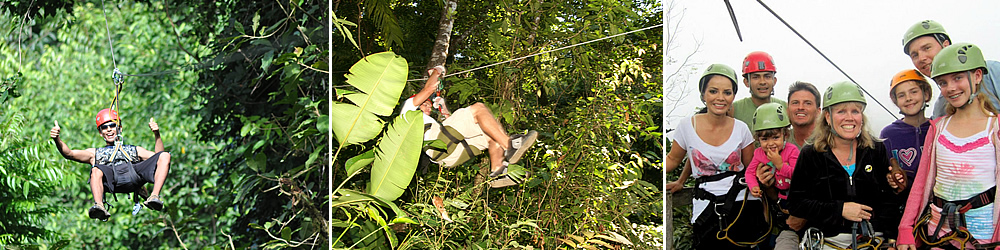 Canopy zip-line tours: enjoy superb views from the tree lookout platforms.